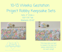 10-13 Weeks Gestation (1)