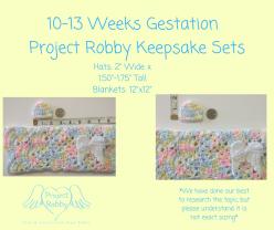 10-13 Weeks Gestation (1)