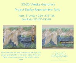 23-25 Weeks Gestation (1)