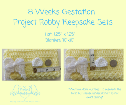 8 Weeks Gestation Project Robby Keepsake Sets (1)